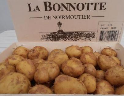 Bonnottes de Noimoutier