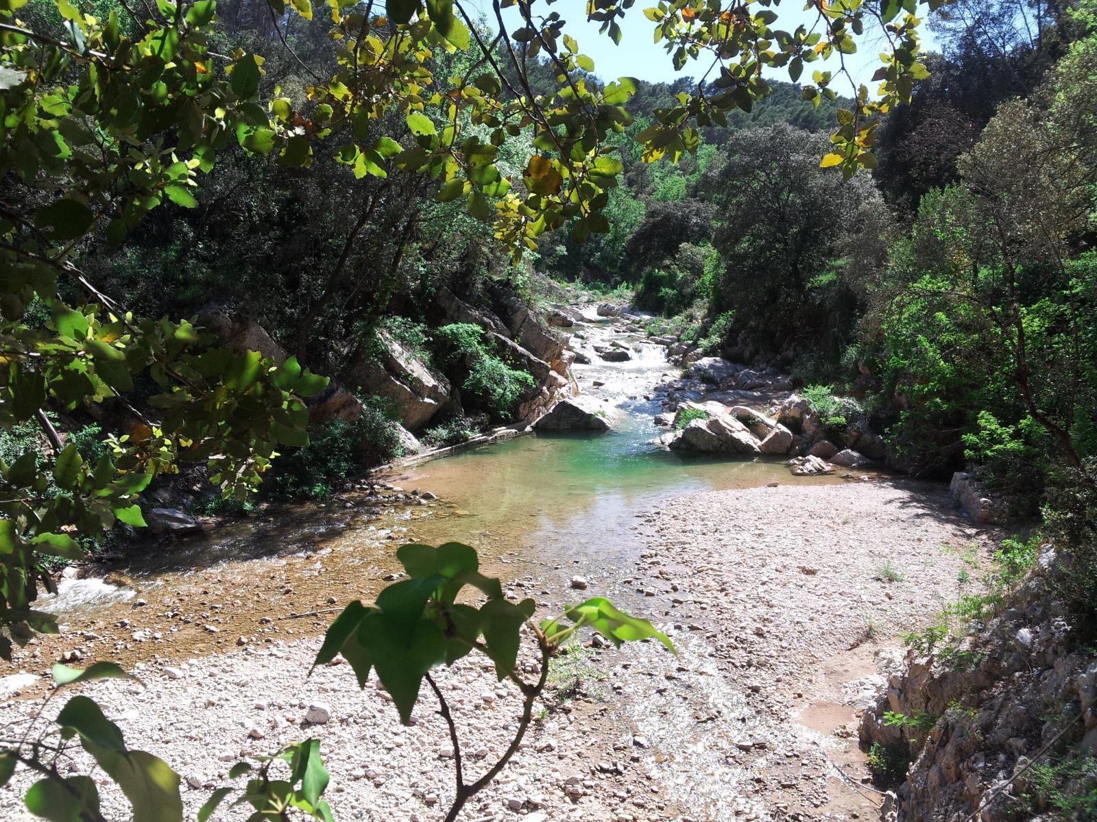 Rivière grand bassin