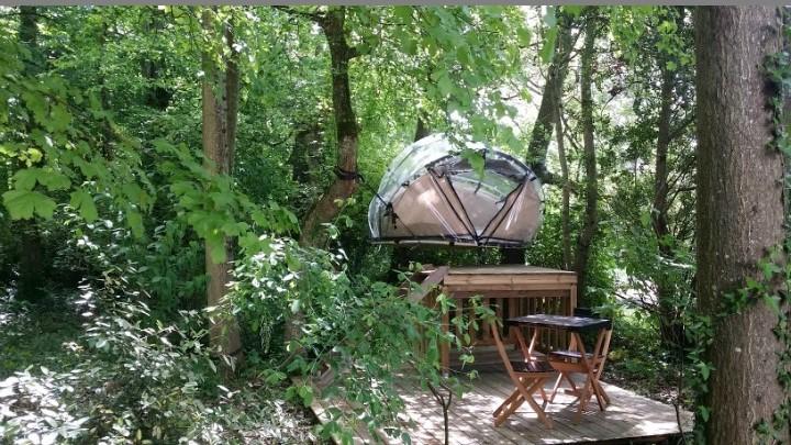Tente bulle perchée au Petit Trianon