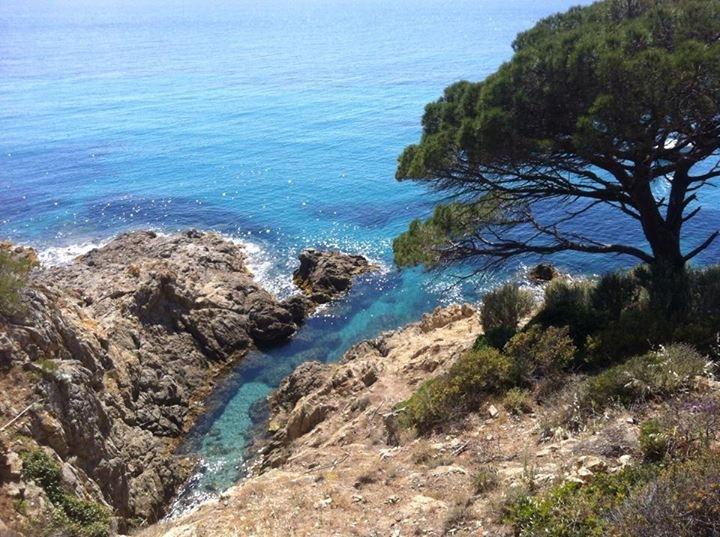 Nature Azur