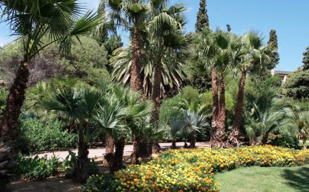 Parcs jardins botaniques arboretums var 83 for Jardin olbius riquier