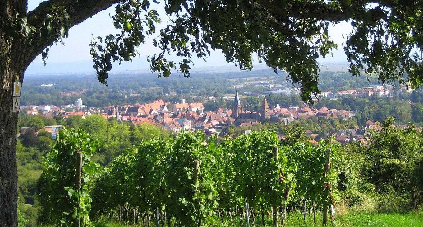 Vers Wissembourg
