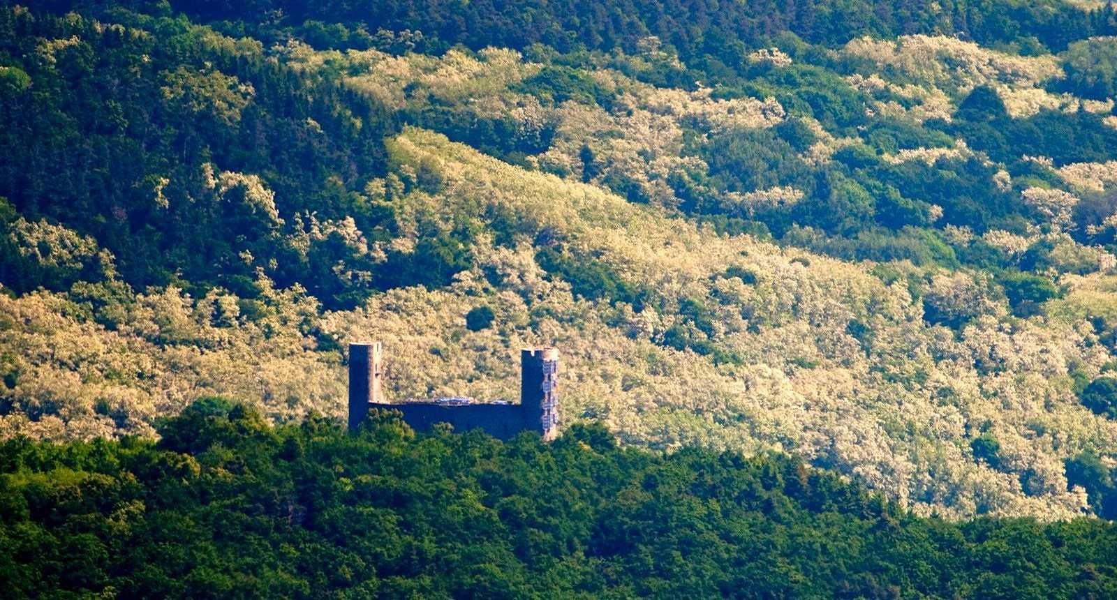Col de l'Ungersberg, entre Andlau et Dambach-la-ville