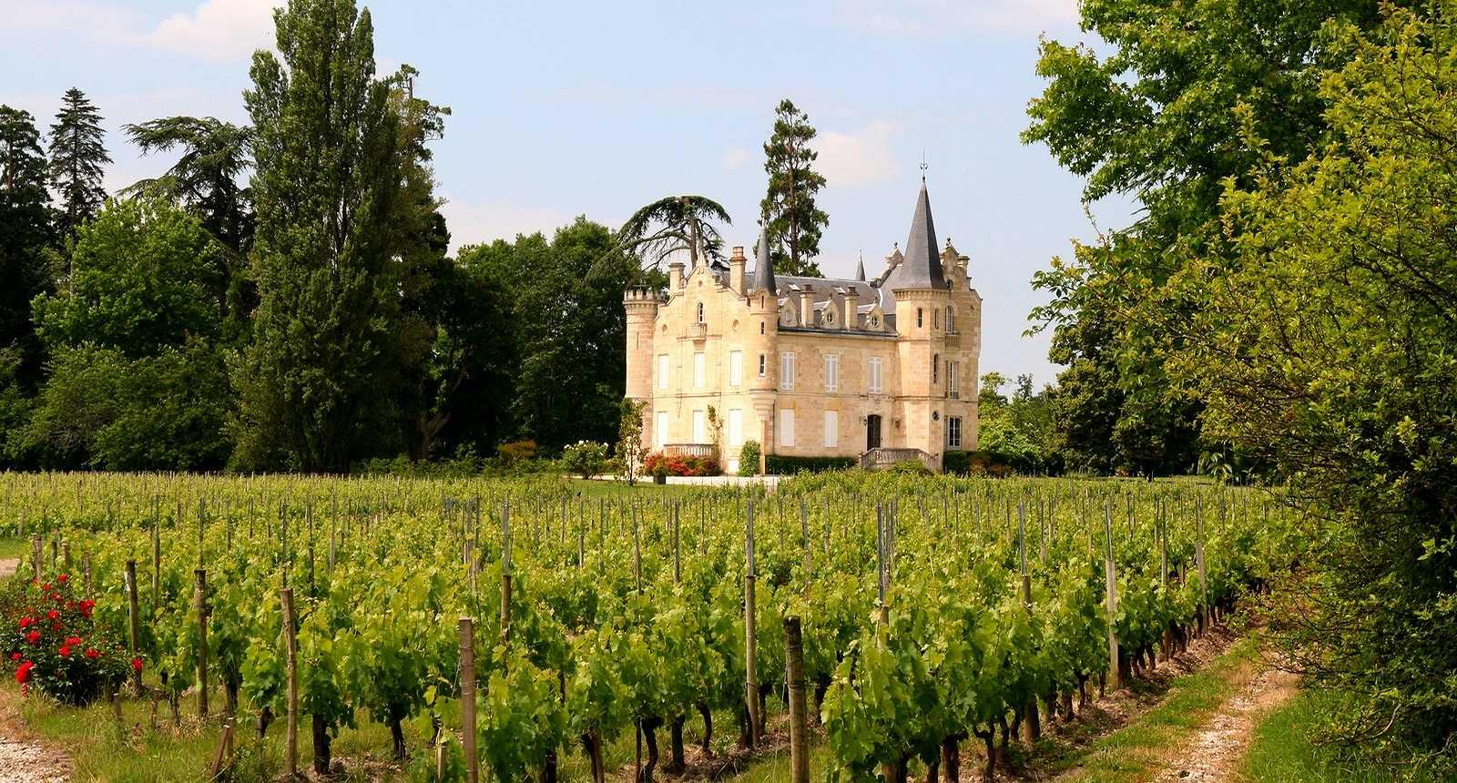 Domaine viticole Château Haut-Bergey à Léognan