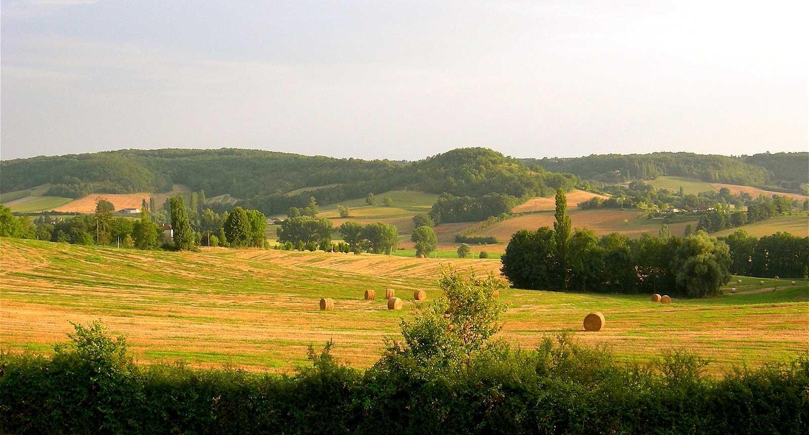 Tournon-d'Agenais (1)