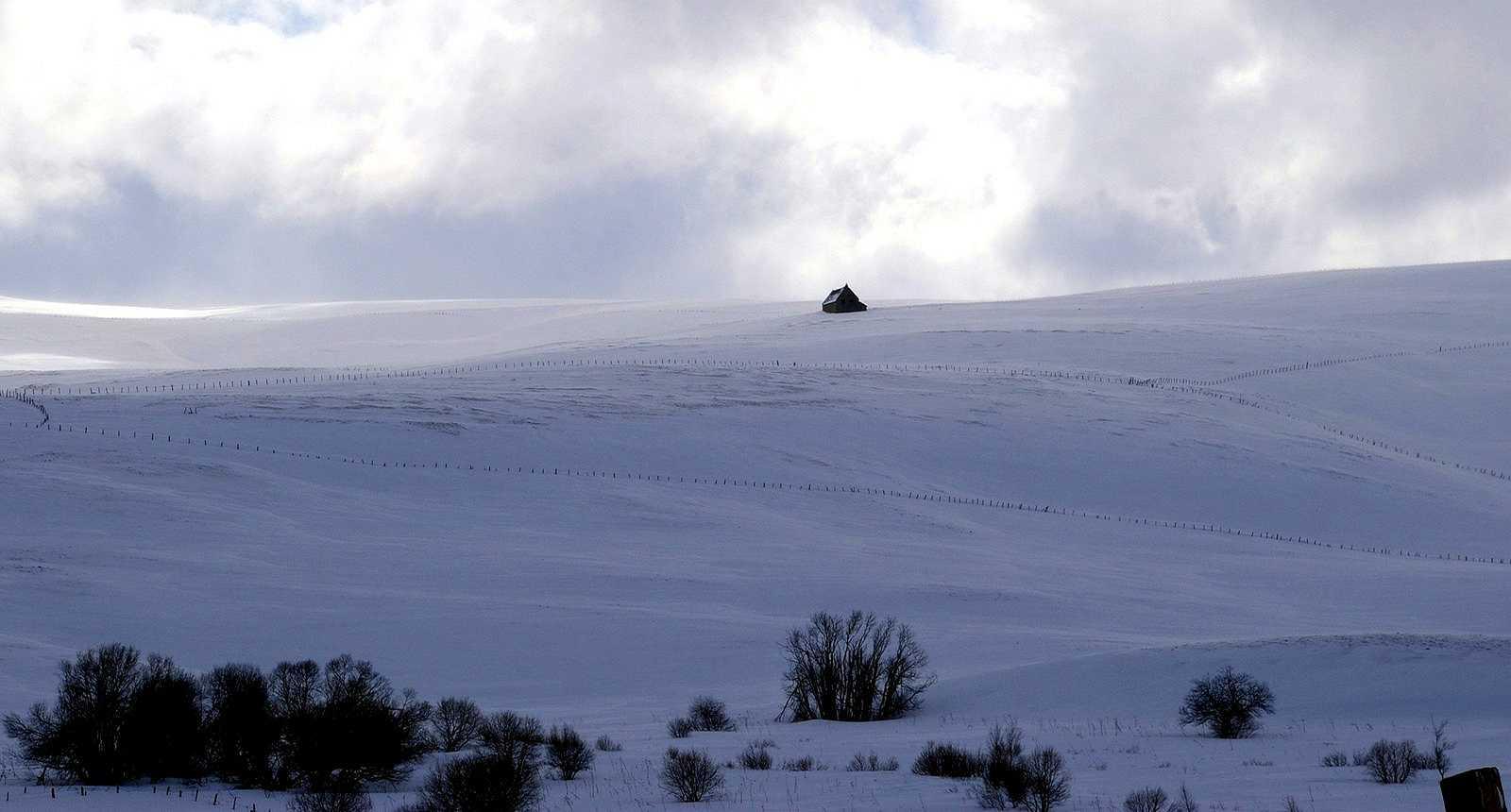 Le Cézallier enneigé, près de La Godivelle