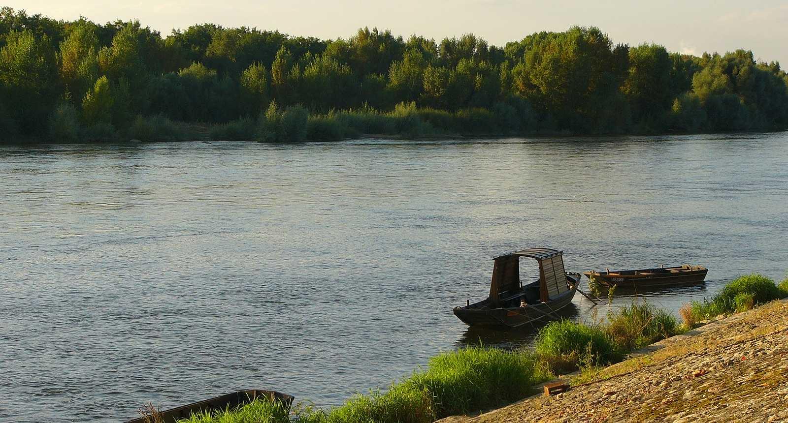 Sur les berges de Cosne-Cours-sur-Loire