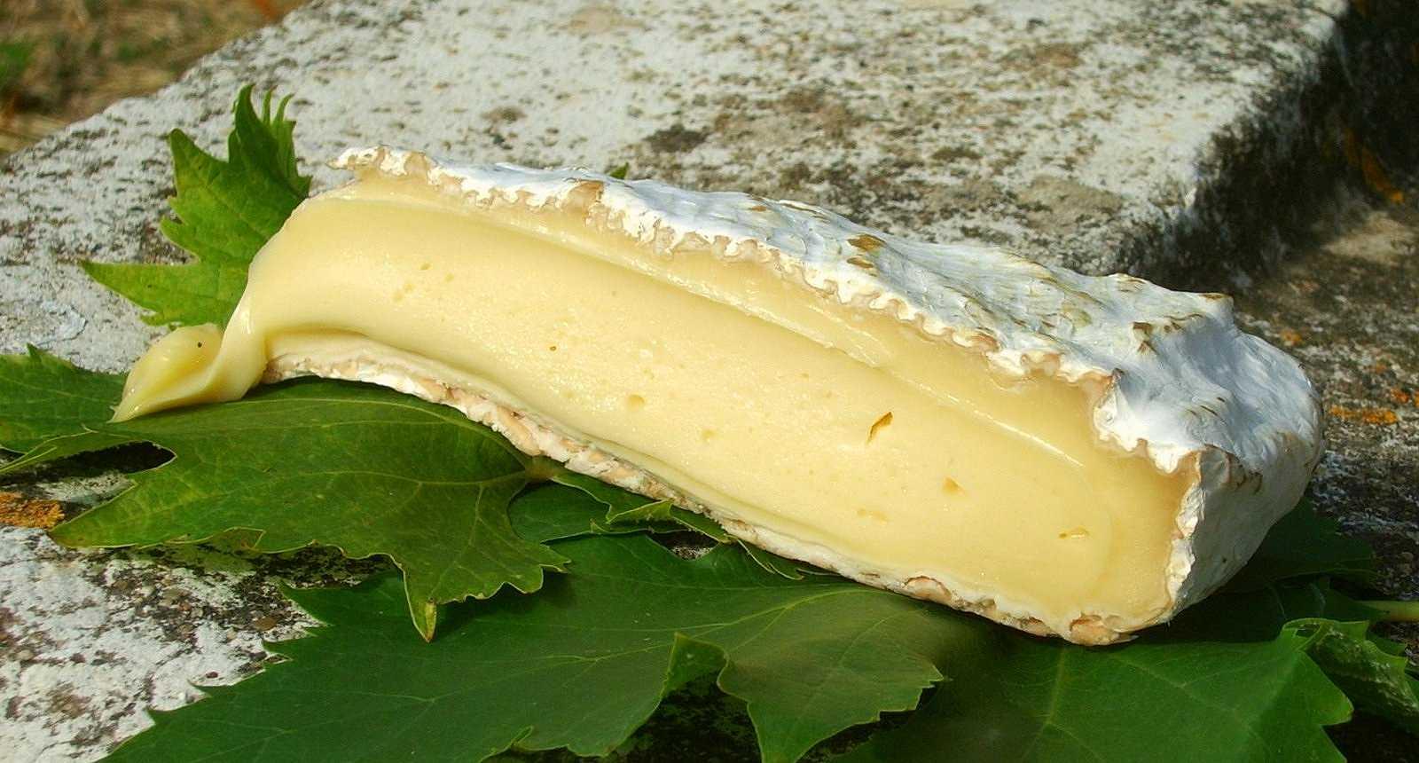 Le Brie de Melun