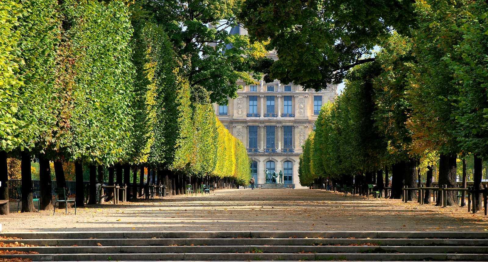 Photo les jardins du palais du louvre 1215 diaporamas for Jardin japonais en ile de france