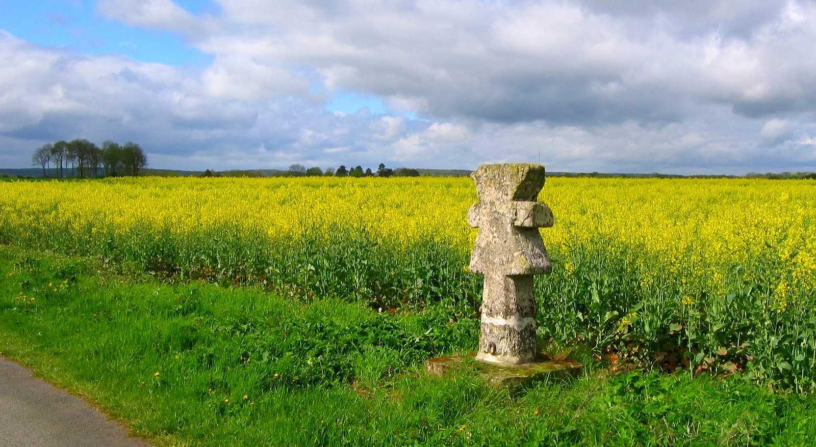 Photo paysage autour de guiry en vexin 95450 vexin for Paysage francais
