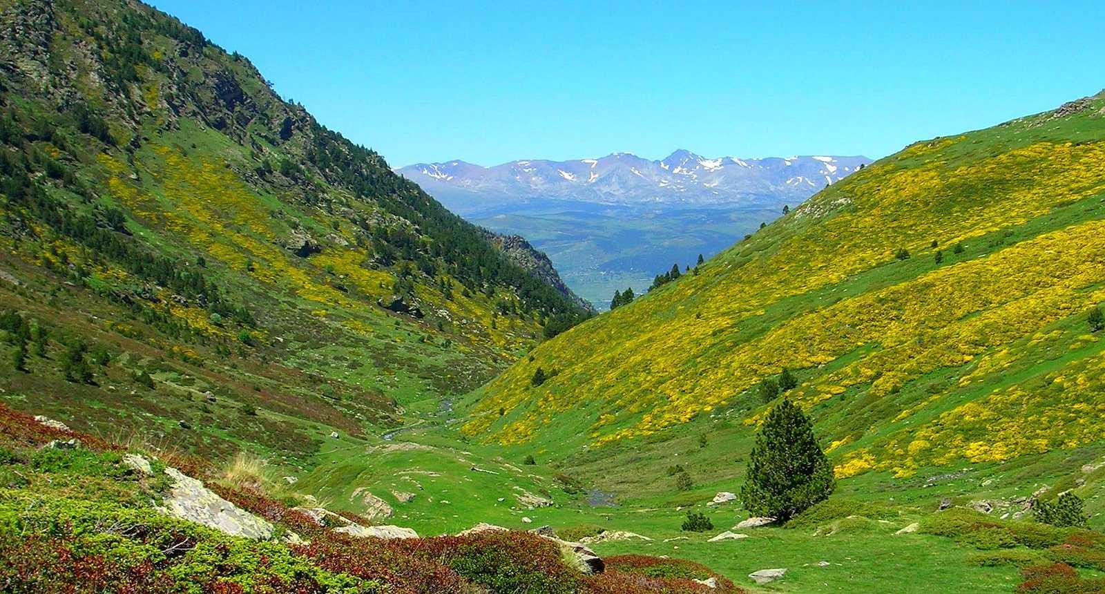 Syndicat d 39 initiative d 39 eyne eyne 66800 pyr n es - Office de tourisme pyrenees orientales ...