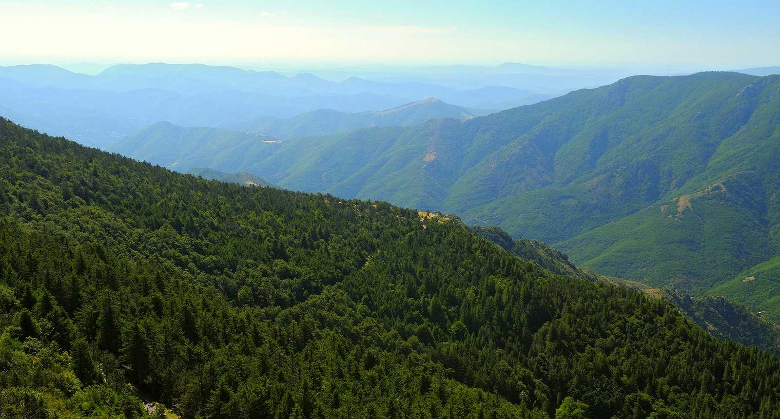 Image : Mont Aigoual