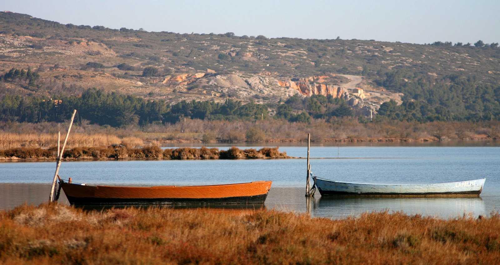 Barques sur un étang à La Palme