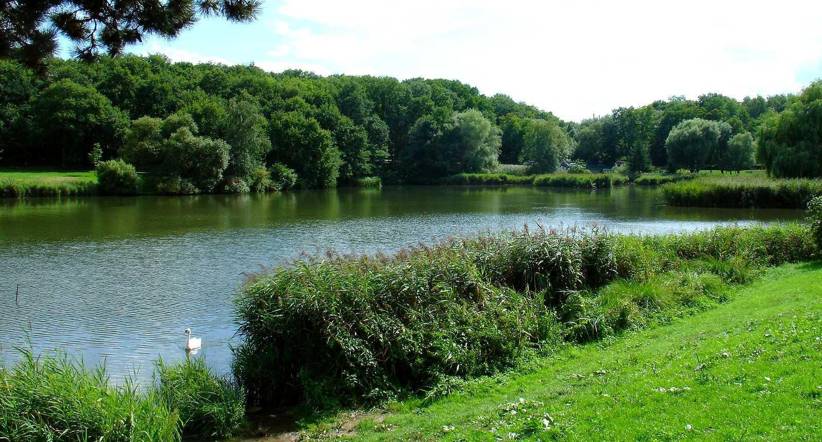 Le Lac de Creutzwald
