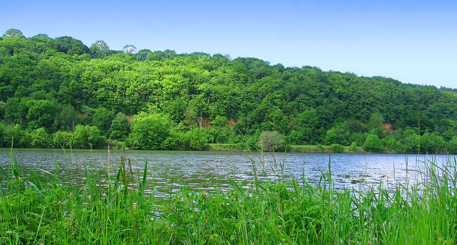 La Moselle entre Aingeray et Liverdun (1)