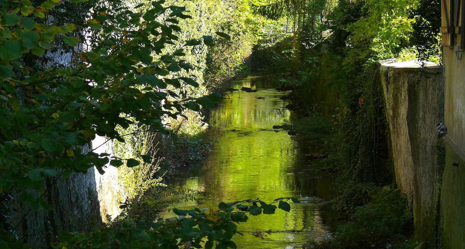 Le Spin, petit cours d'eau au coeur de la ville de Dieuze