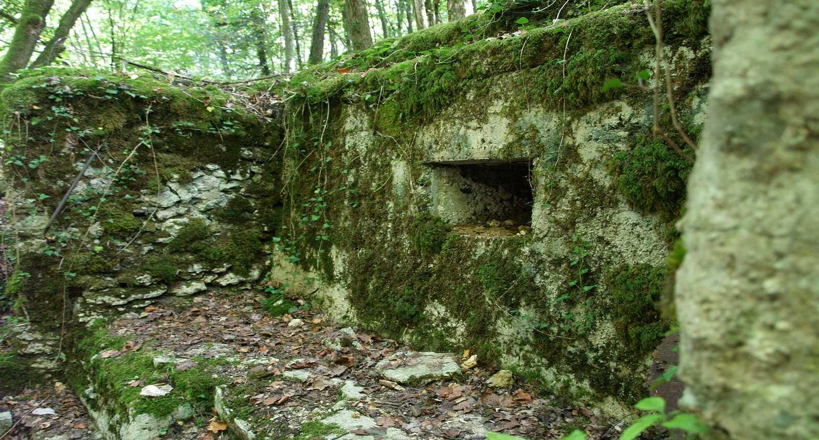 Ruines des tranchées de Saint-Mihiel