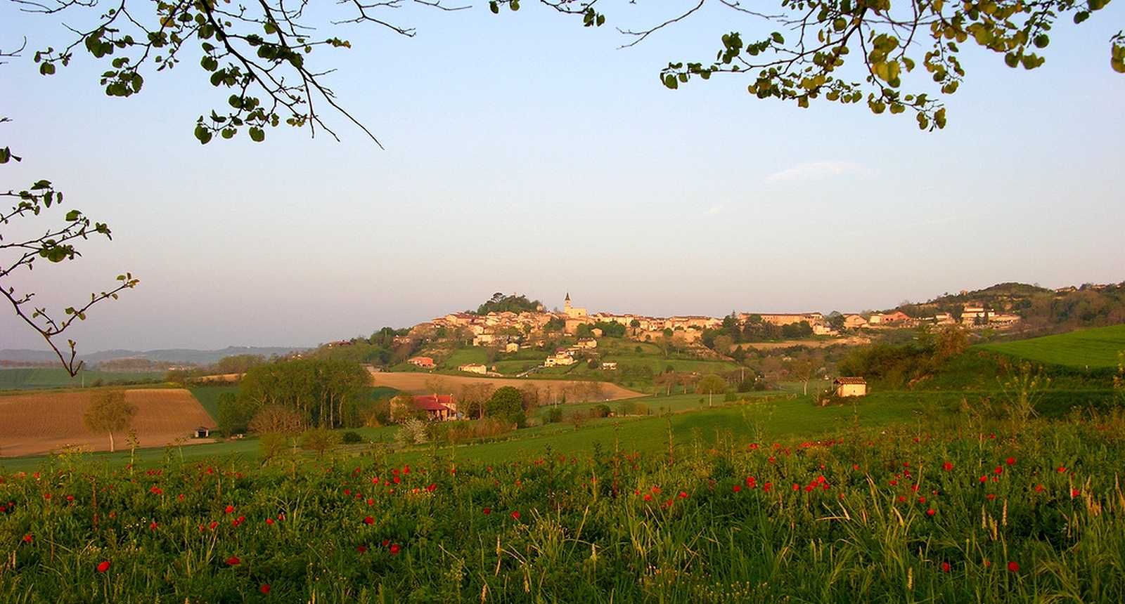 Panorama sur le village de Lautrec