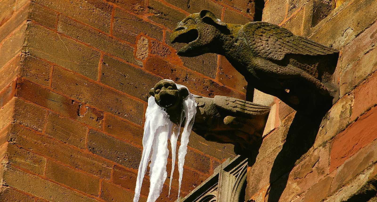 Gargouille de la Cathédrale Notre-Dame de Rodez