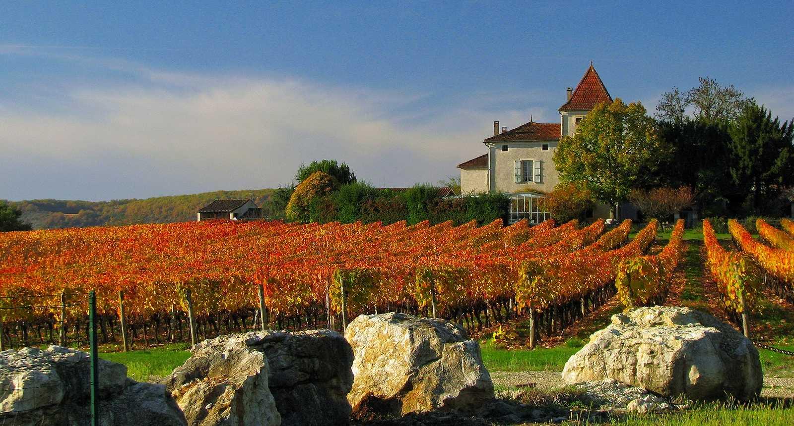 Les vignobles du Quercy Blanc en automne