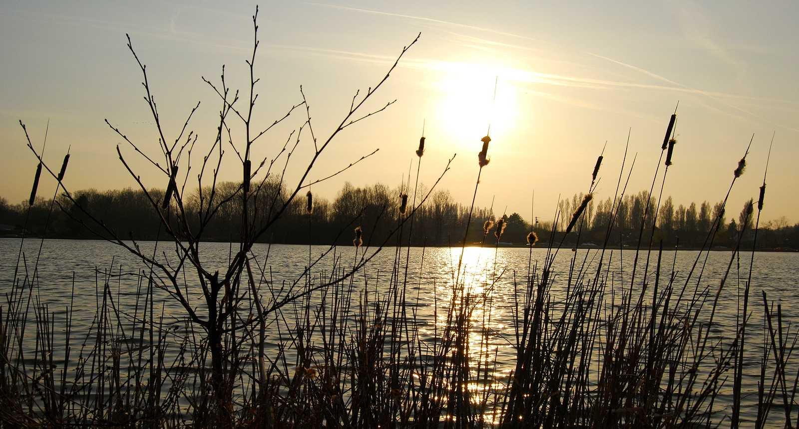 Le Lac d'Ardres