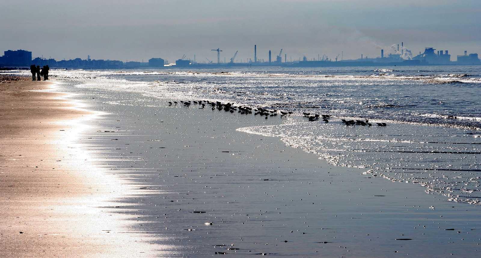 La plage de Bray-Dunes