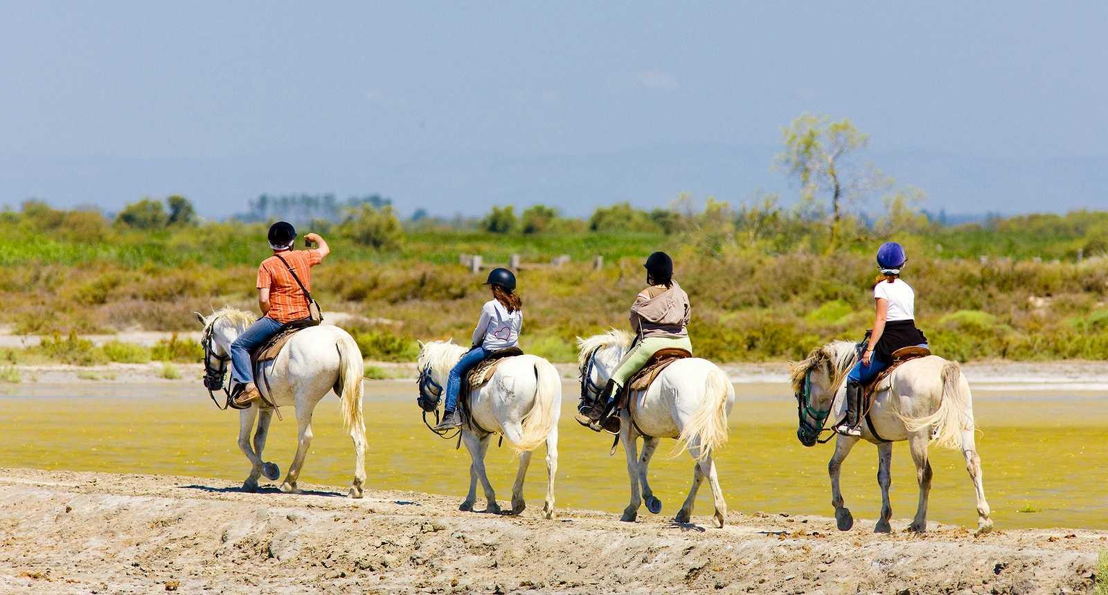 Cavaliers dans le Parc Naturel Régional de Camargue