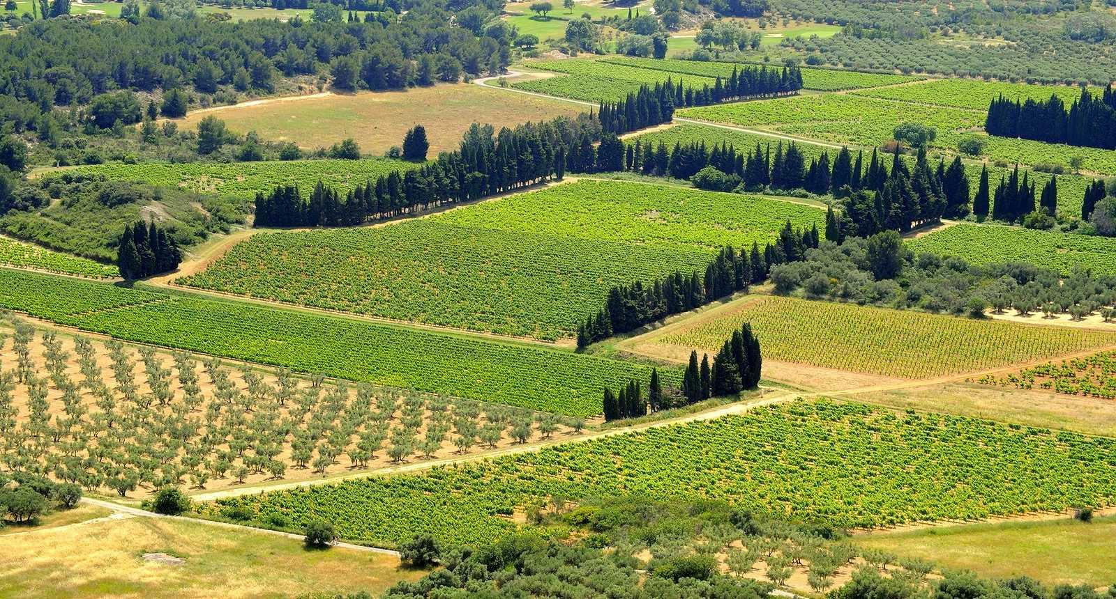 La vallée des Baux-de-Provence