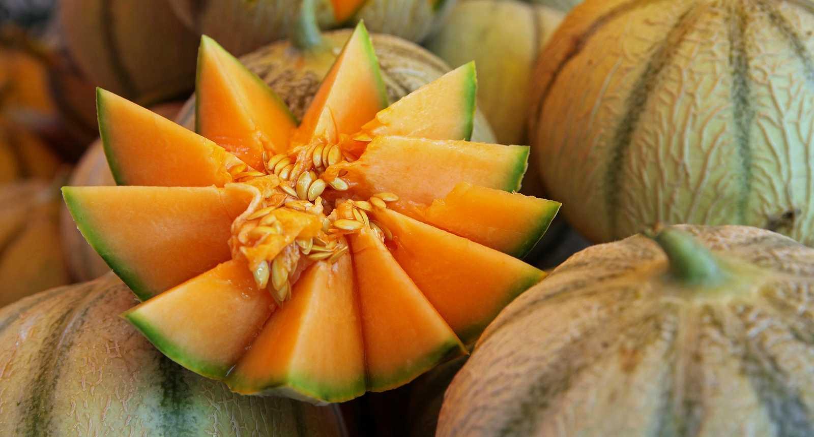 Melons sur le marché d'Aix-en-Provence