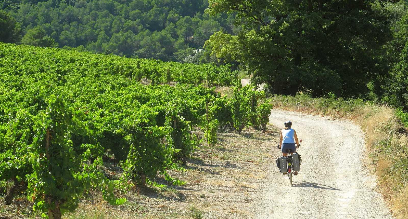 Cyclotourisme au pied du Mont Ventoux