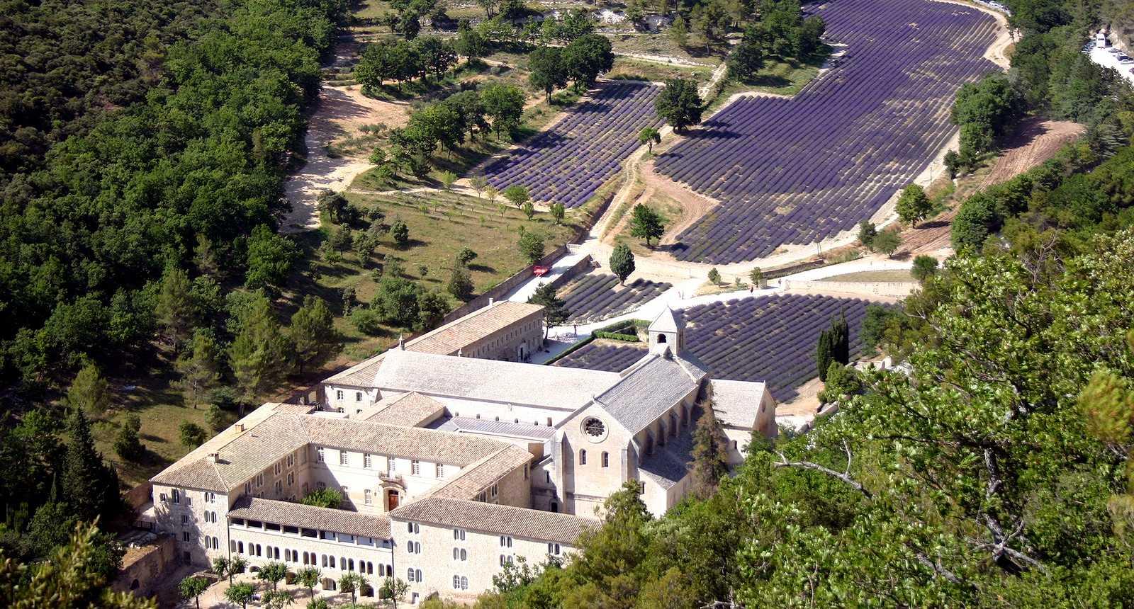 L'Abbaye Notre-Dame de Sénanque et ses champs de lavande