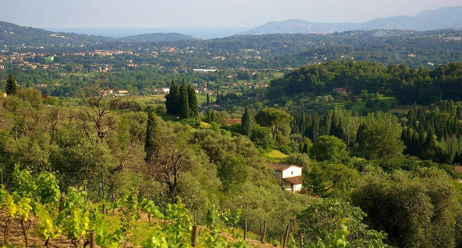 Panorama sur la ville de Biot