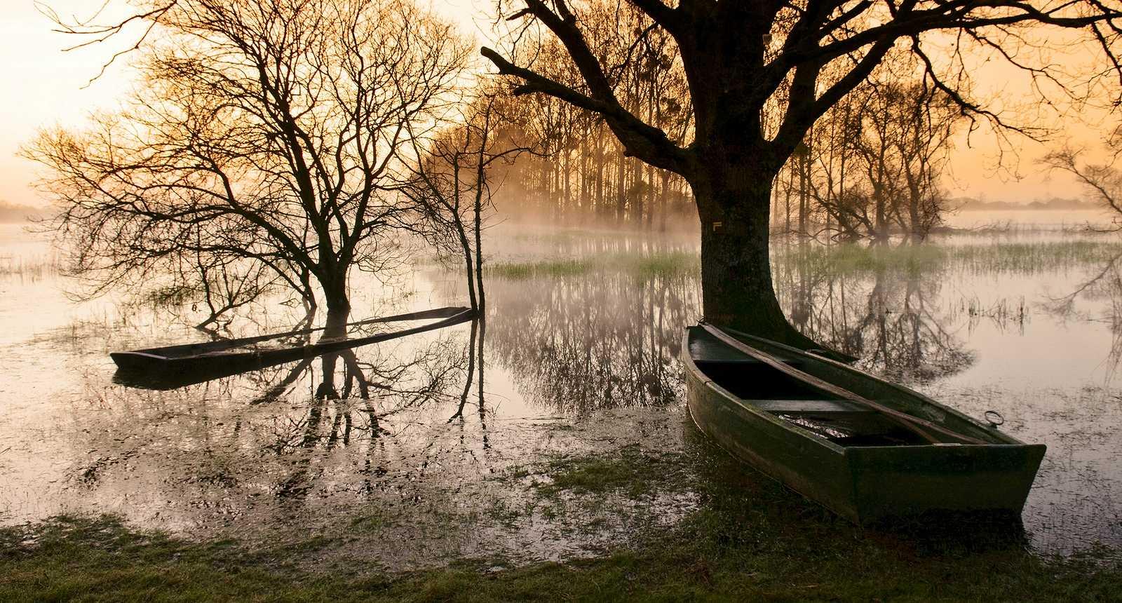 Lever de soleil sur le Marais de Goulaine