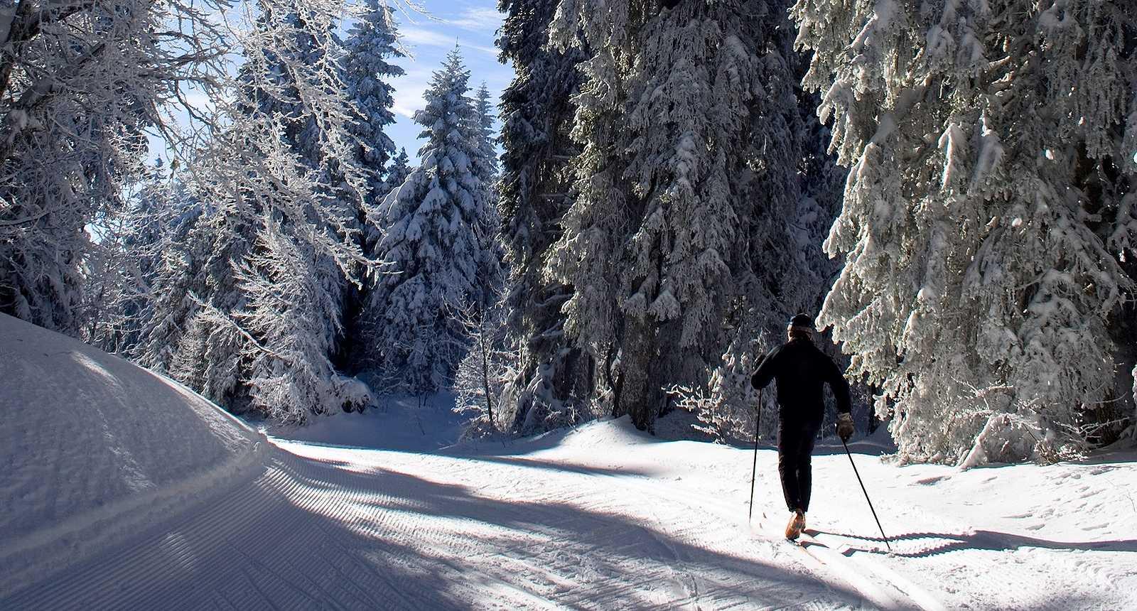 Skieur de fond au Revard