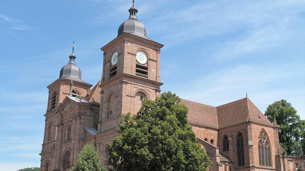 Cathédrale St-Dié_Saint-Dié-des-Vosges (1)