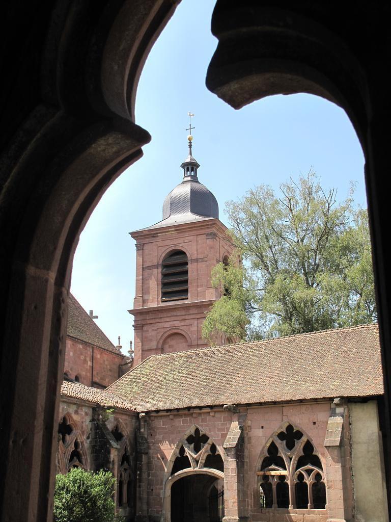 Cathédrale St-Dié_Saint-Dié-des-Vosges (2)