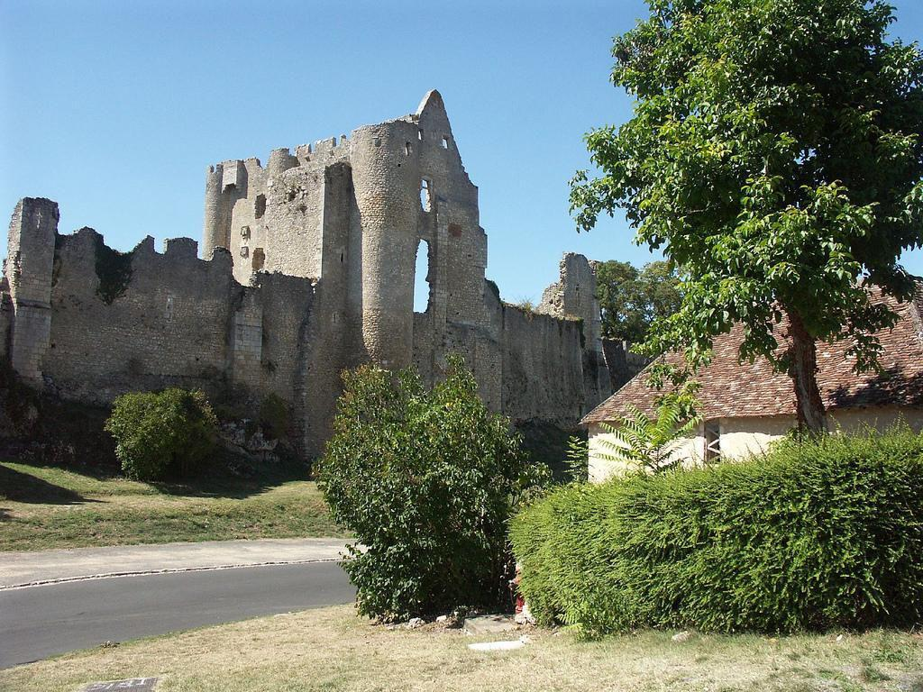 Château Fort_Angles-sur-l'Anglin (1)