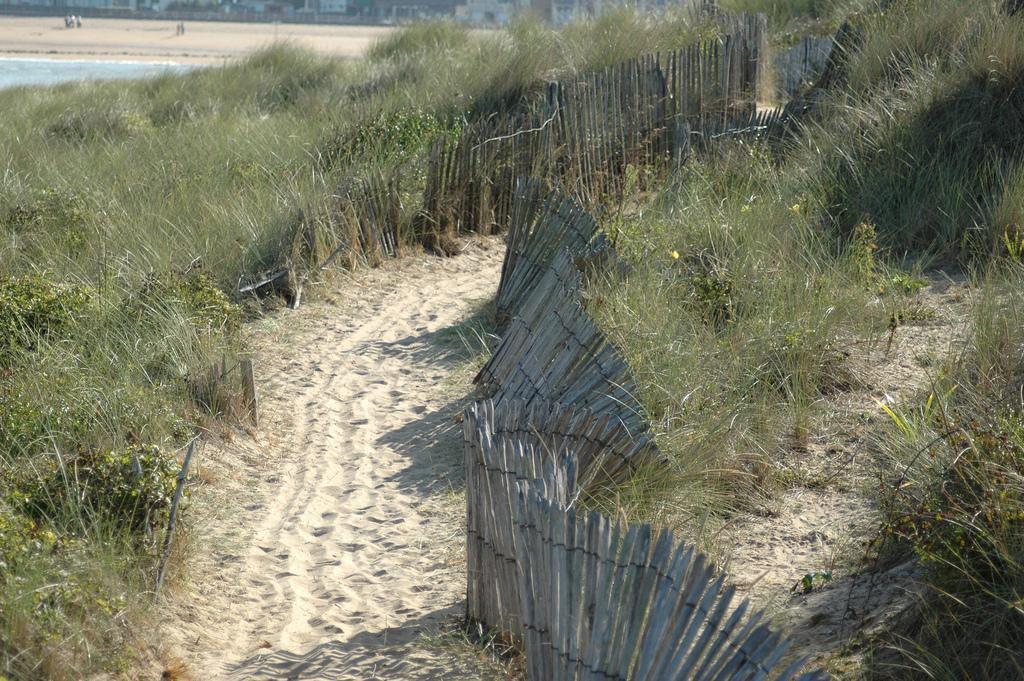 Dune_Houlgate