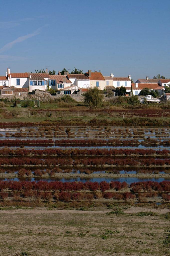 Île-de-Noirmoutier_Noirmoutier-en-l'Île