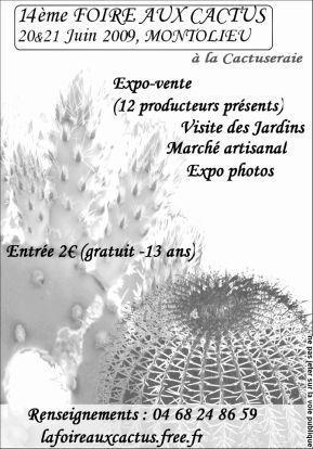 Foire aux cactus - Montolieu