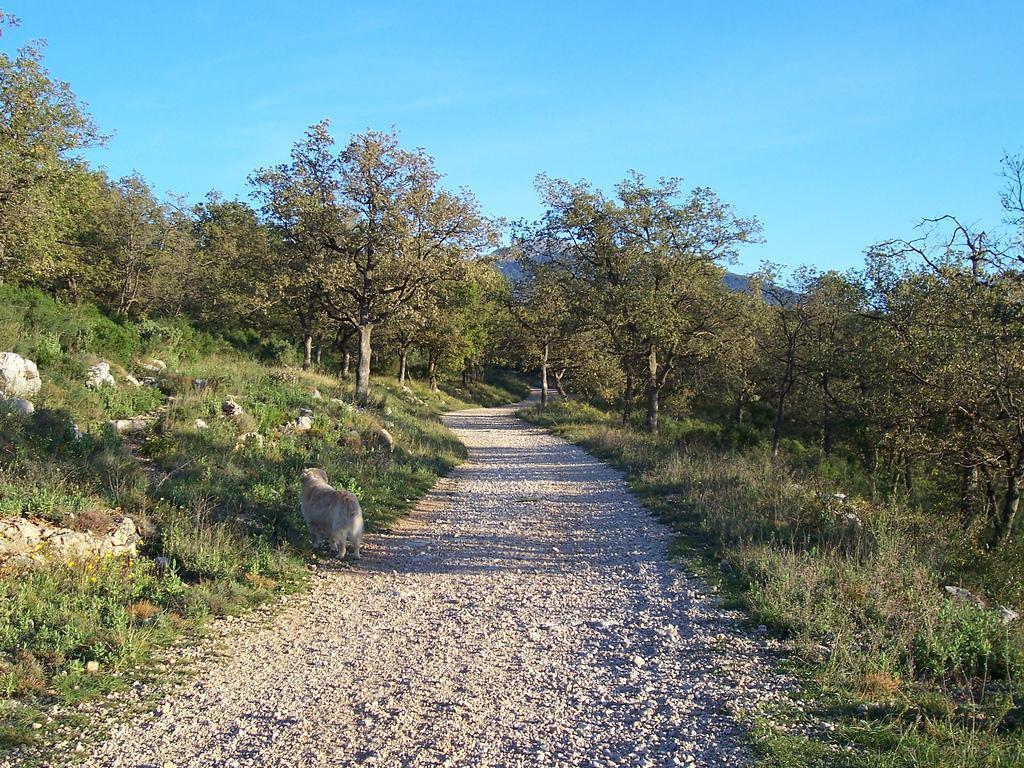Le Camp Romain, Le Rouret