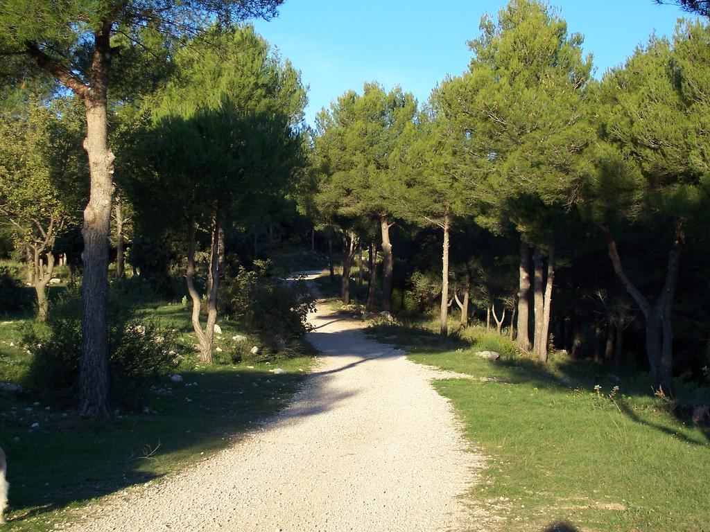 Le Camp Romain, Le Rouret (1)
