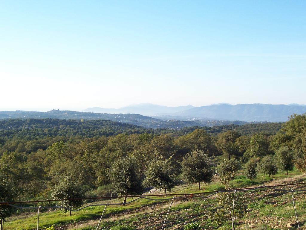 Le collines du Pays de Grasse, au Rouret