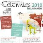 Image : Les Celtivales