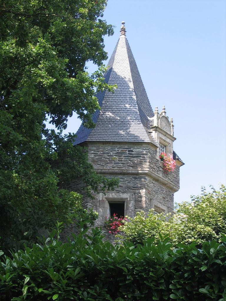 Rochefort en Terre (1)