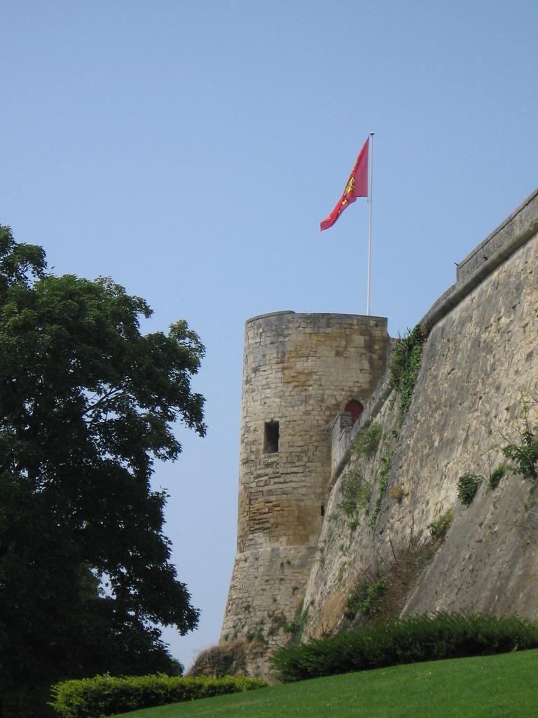 Château de Guillaume-le-Conquérant_Falaise (1)