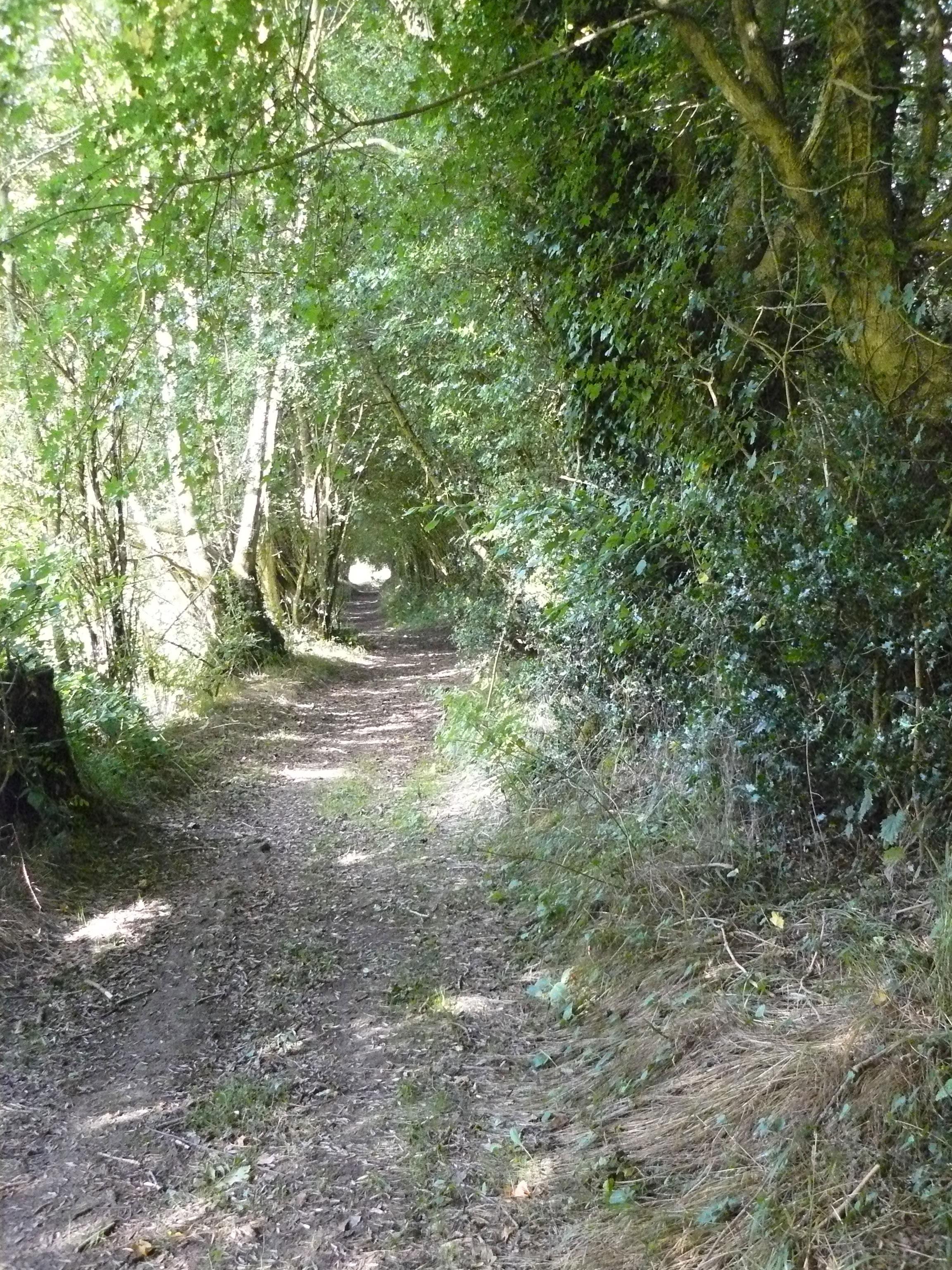 Sentier de la Biodiversité à Cormeilles