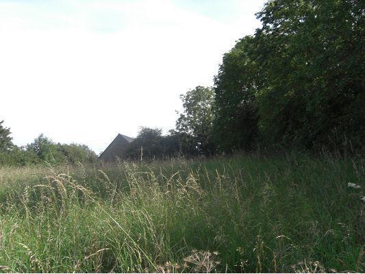 Bois du château de Gavrus