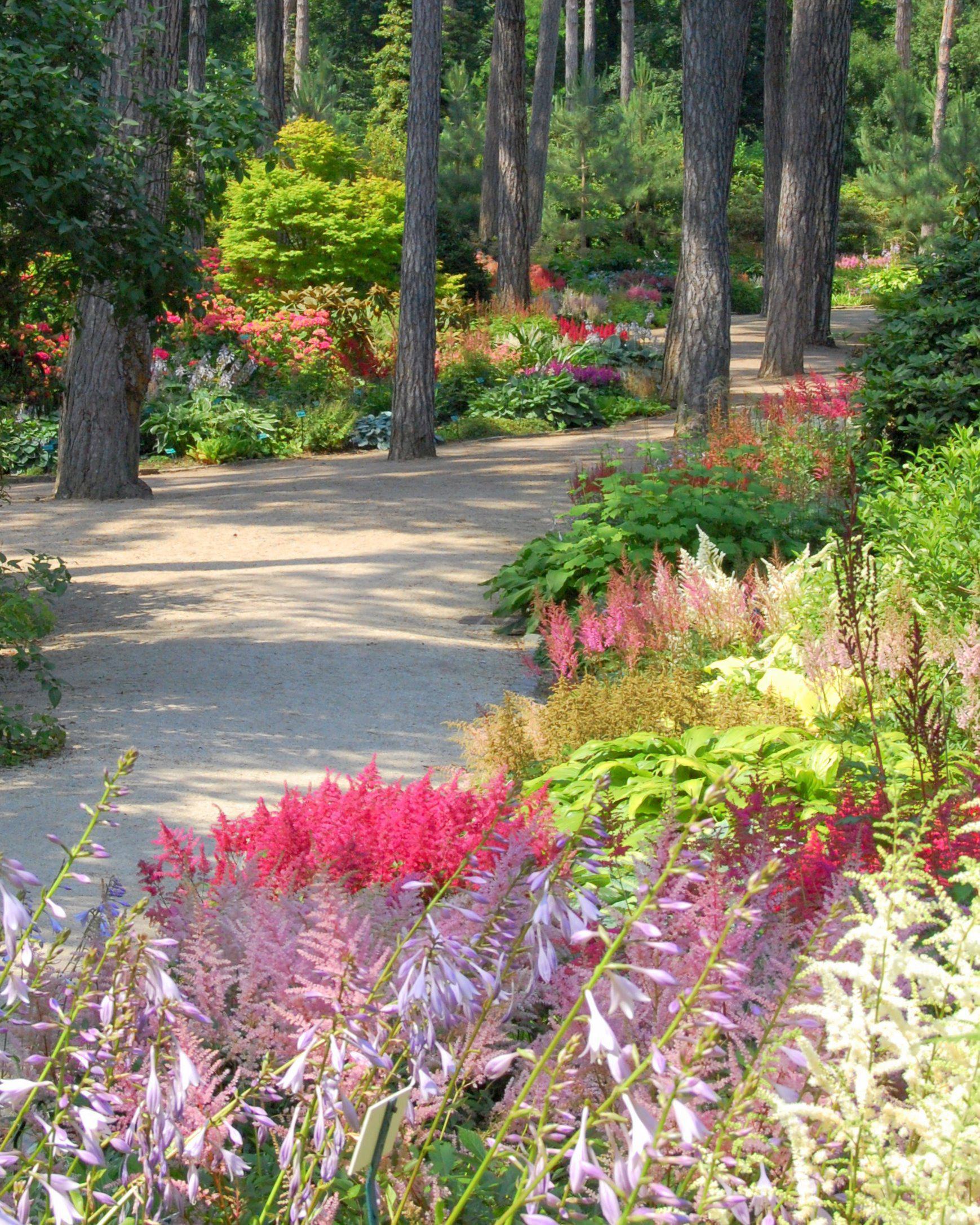 Parcs jardins botaniques arboretums paris 75 page 2 for Jardin botanique paris