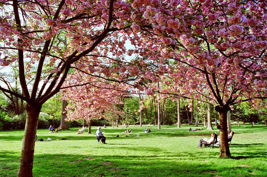 Parcs jardins botaniques arboretums paris 75 page 2 - Theatre de verdure du jardin shakespeare pre catelan ...